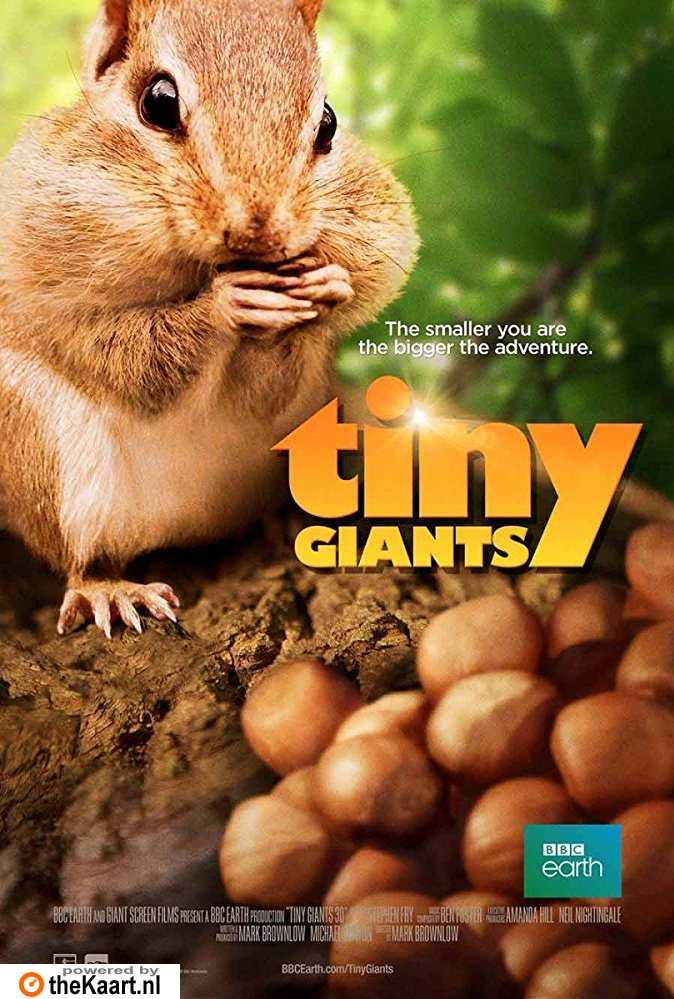 Tiny Giants 3D poster, copyright in handen van productiestudio en/of distributeur