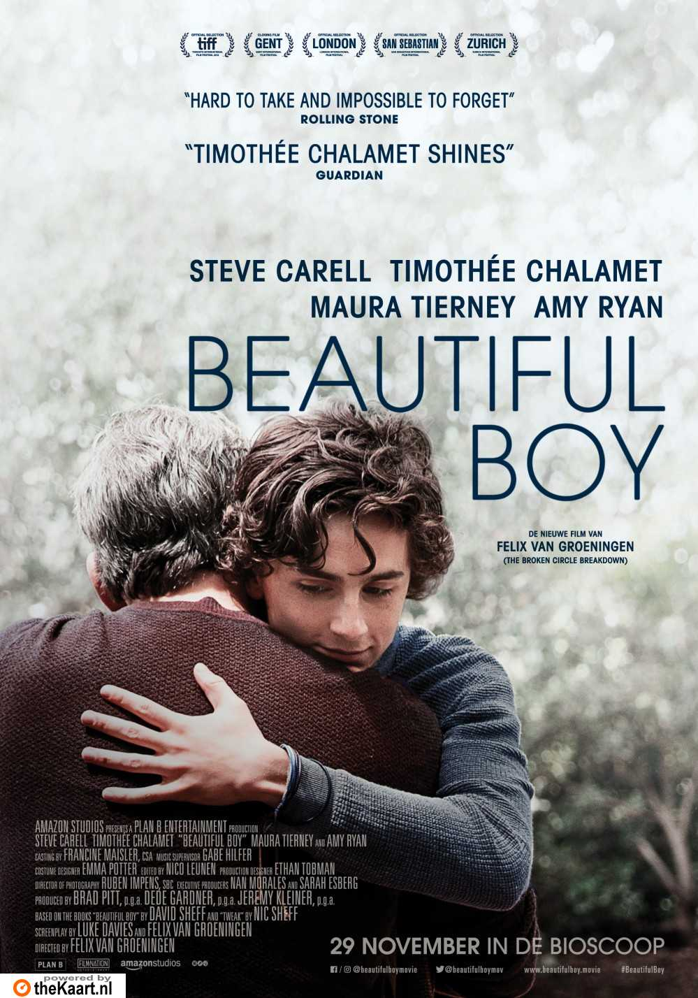 Beautiful Boy poster, © 2018 The Searchers